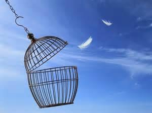 psychologue-montpellier-liberté-consulter